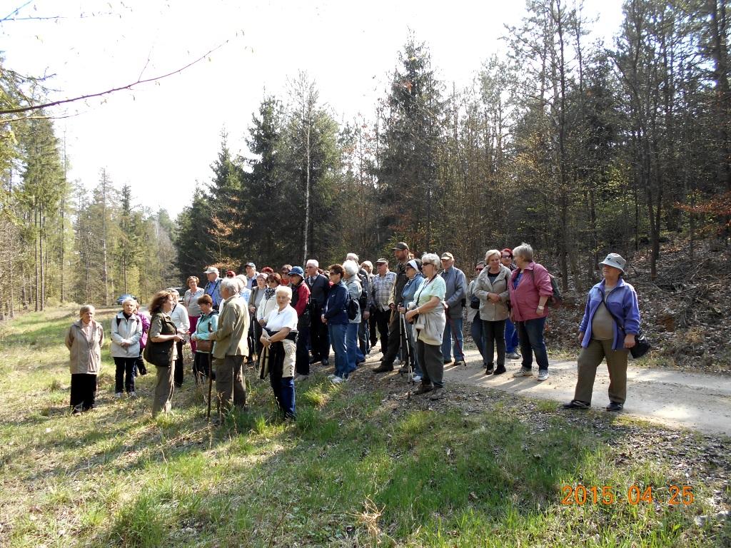 Odwiedziliśmy Nadleśnictwo Jagiełek Koło Miłośników Lasu I
